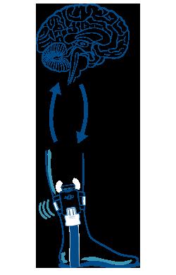 Neuropathy Device_Walkasins_Product Step 3
